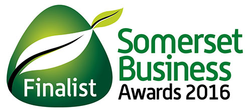 Somerset Business Awards Elite Staffing Solutions